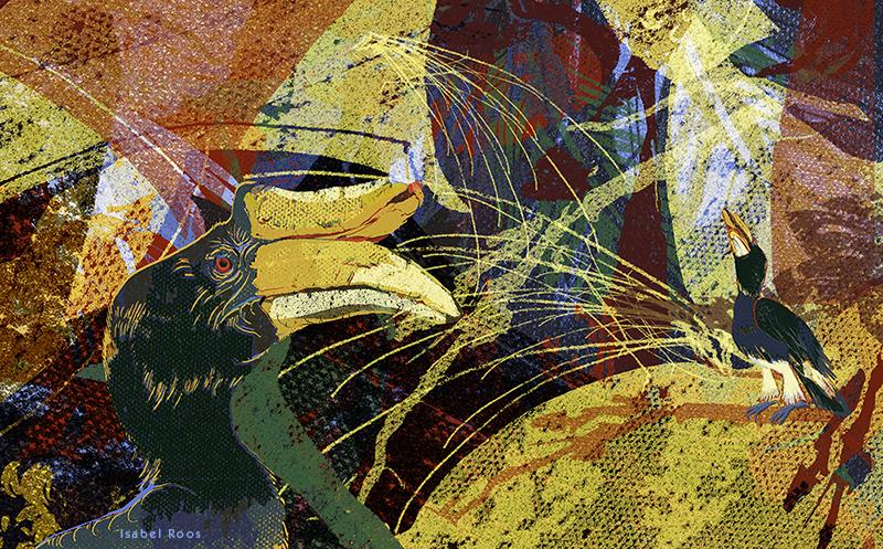Aves/ Die Welt der Vögel