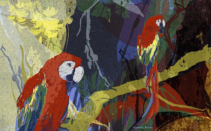 Aves/ Die Welt der Vögel 2